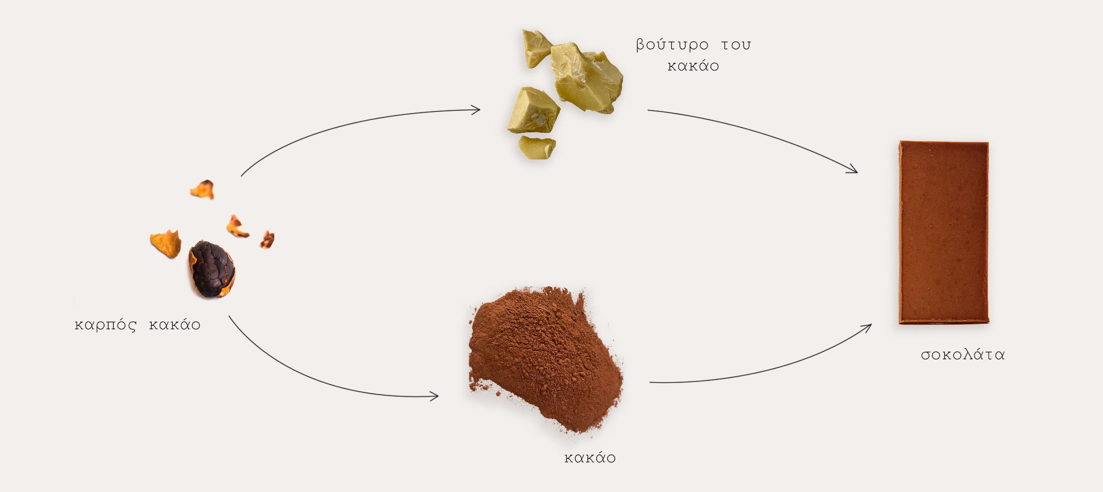 Καρπός κακάο, βούτυρο του κακάκο, κακάο, σοκολάτα.
